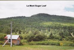 Le Mont Sugar Loaf